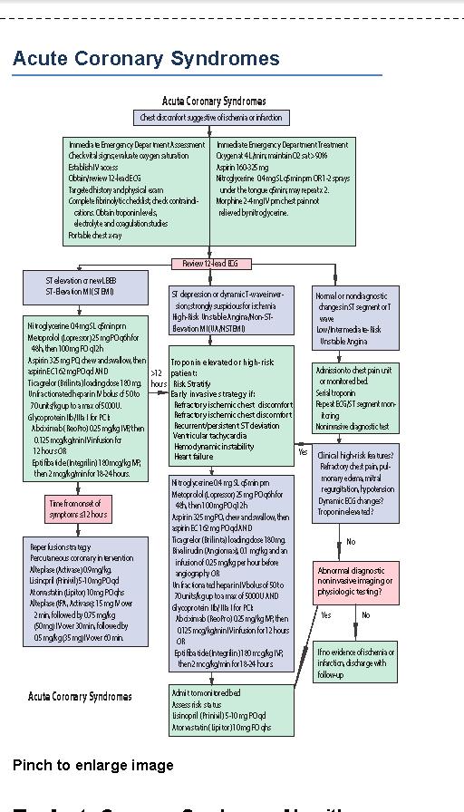 bls provider manual 2015 pdf free