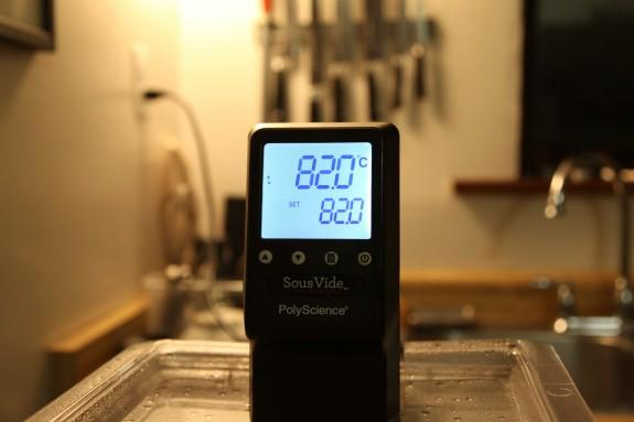 polyscience sous vide professional manual